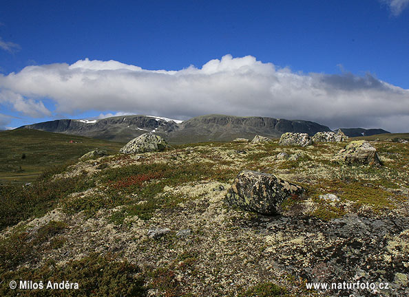 National Park Hallingskarvet (N)