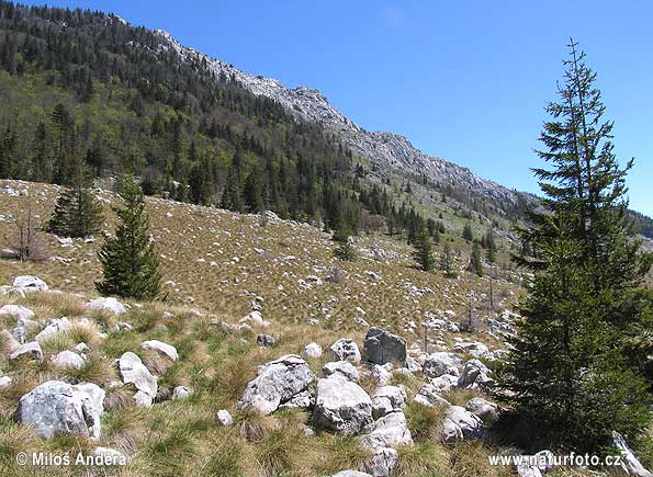 National Park Sjeverni Velebit (HR)