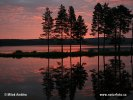 Lapland, sunrise