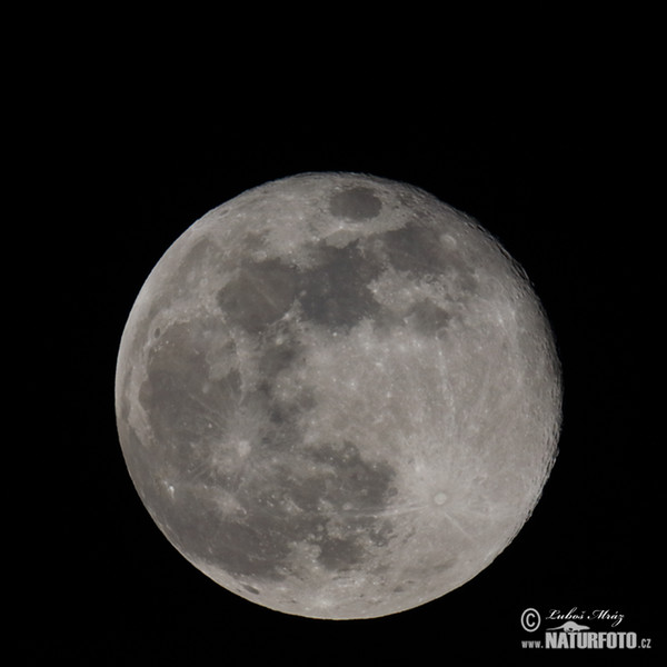 Moon - Full moon (Luna 2)