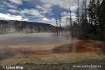 Yellowstone, Mammoth