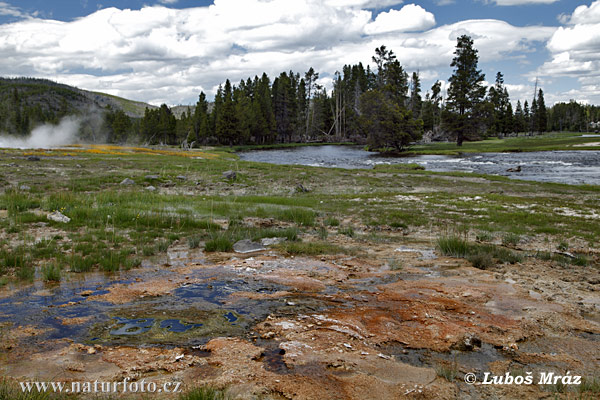 Yellowstone, Geysers (Wyoming, USA)