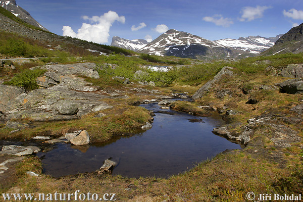 On the Romsdalen Mountain (N)