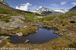 On the Romsdalen Mountain