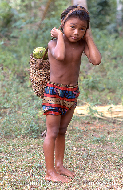 Embera indian child (People)