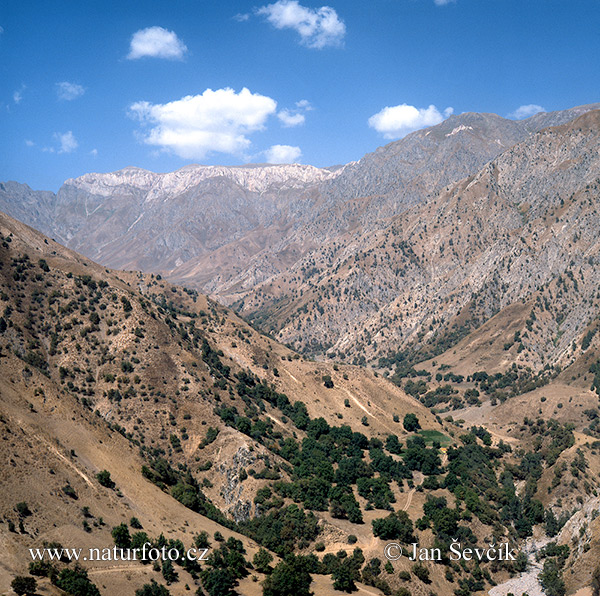 Gissar mountains (TAD)
