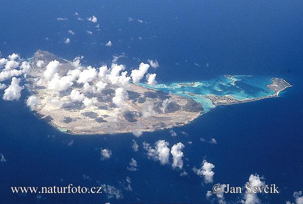 Isla la Orchila
