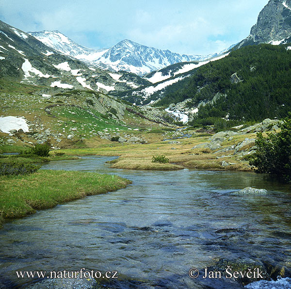 National Park Pirin (BG)