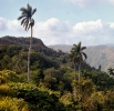 Escambray mountains