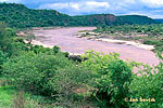 Olifants River, Kruger NP