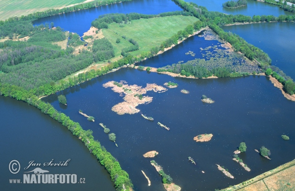 Vrbenské fishponds (AIR)