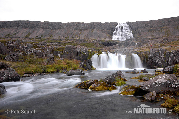 Waterfall Fjallfoss (Dynjandi) (IS)